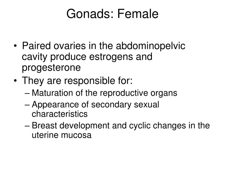 Gonads: Female