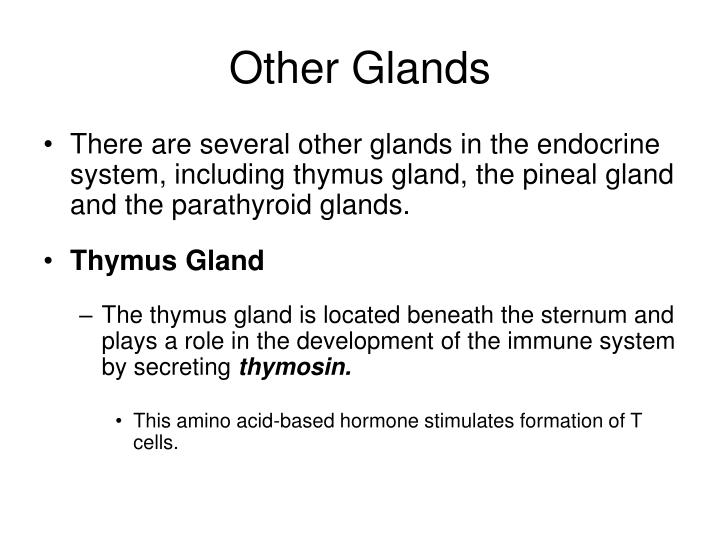 Other Glands