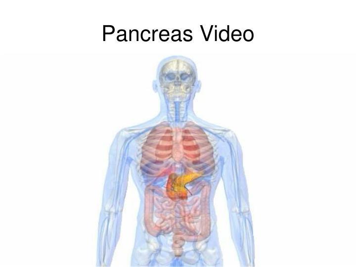 Pancreas Video