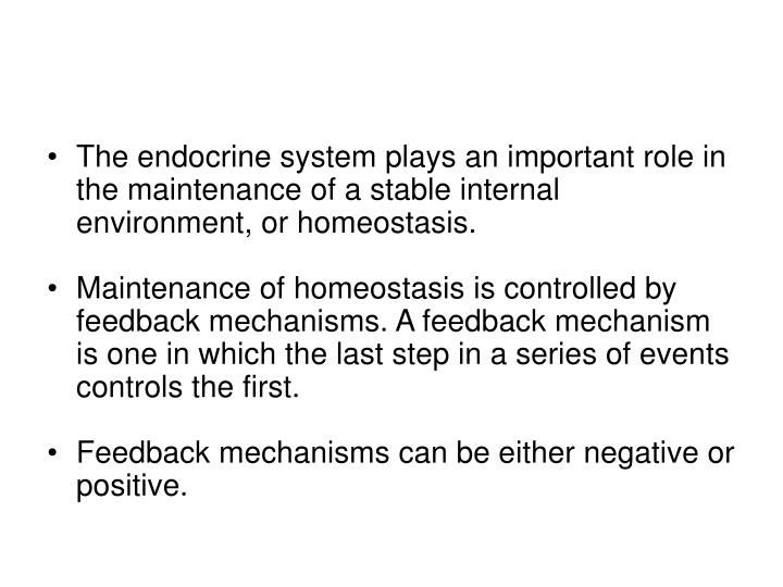 The endocrine system plays an important role in the maintenance of a stable internal environment, or homeostasis.