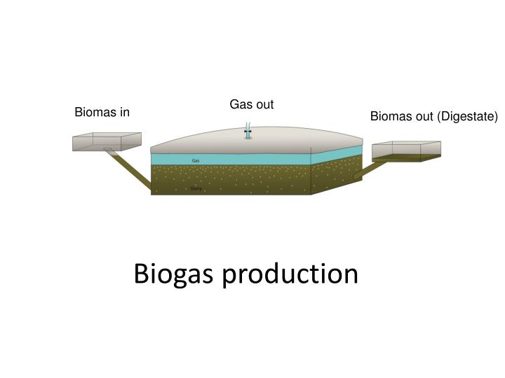 biogas production n.