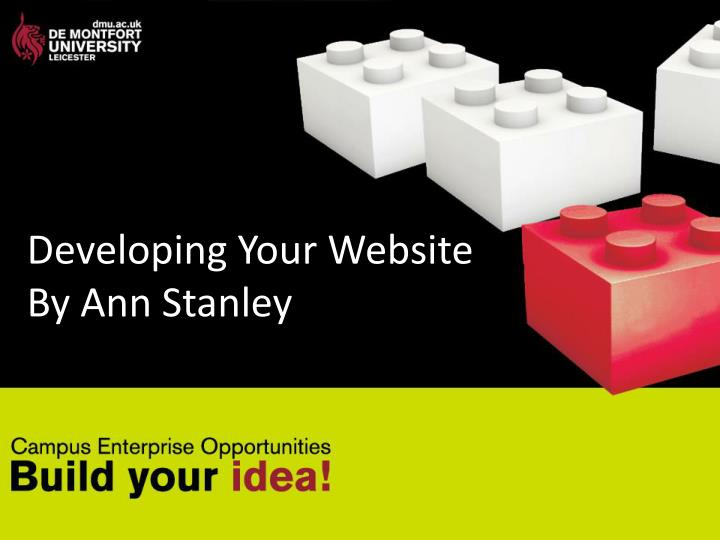 developing your website by ann stanley n.