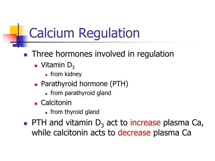 Calcium Regulation