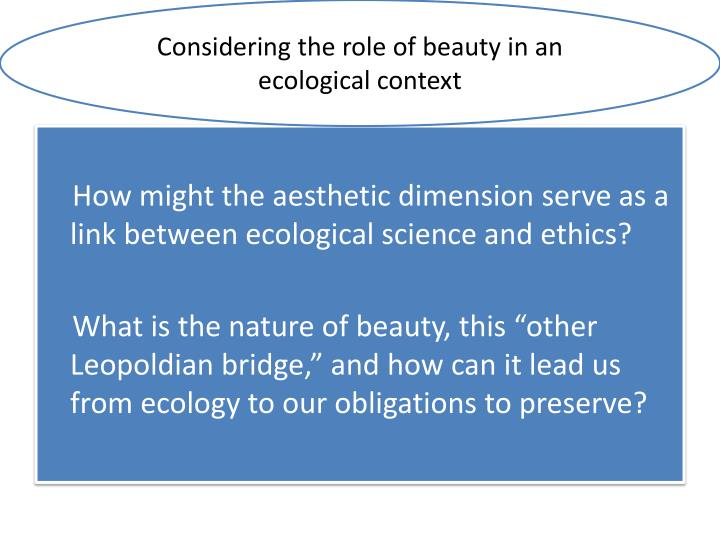 Considering the role of beauty in an ecological context