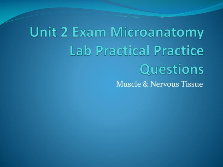 unit 2 exam microanatomy lab practical practice questions n.