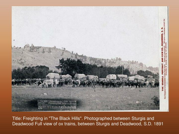"Title: Freighting in ""The Black Hills"". Photographed between Sturgis and Deadwood Full view of ox trains, between Sturgis and Deadwood, S.D. 1891"