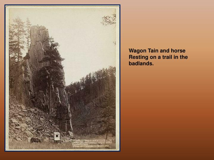 Wagon Tain and horse