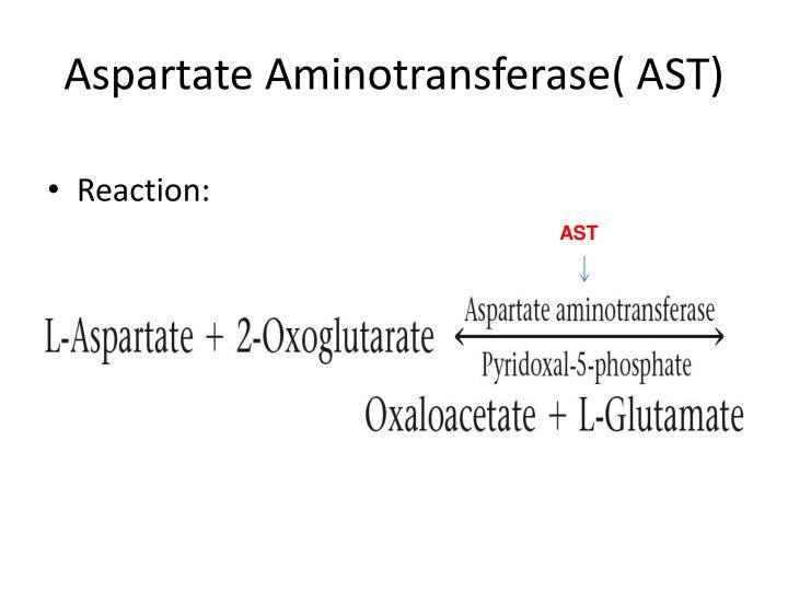 Aspartate Aminotransferase( AST)