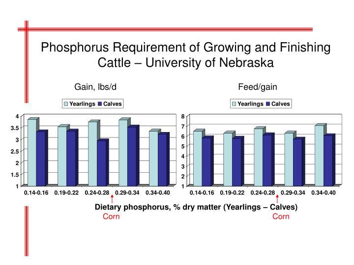Phosphorus Requirement of Growing and Finishing Cattle – University of Nebraska