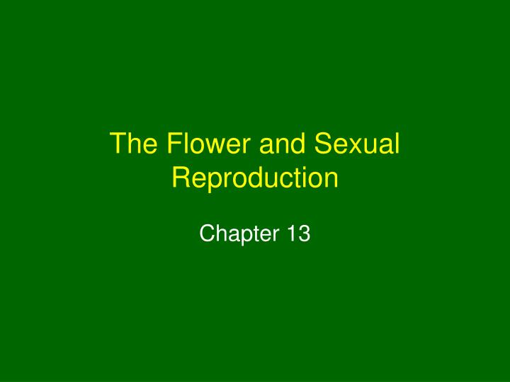 the flower and sexual reproduction n.