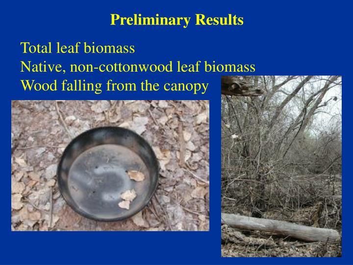 Total leaf biomass