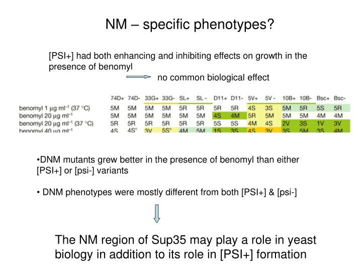 NM – specific phenotypes?