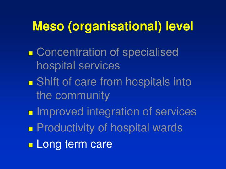 Meso (organisational) level