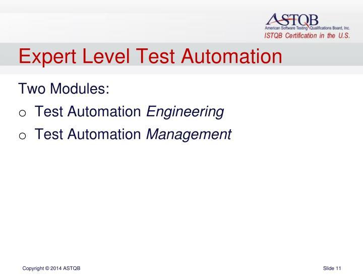 Expert Level Test Automation