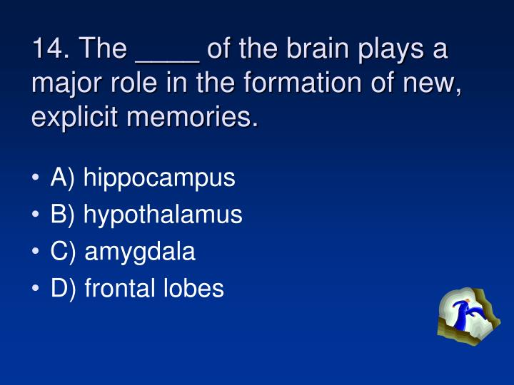 14. The ____ of the brain plays a major role in the formation of new, explicit memories.