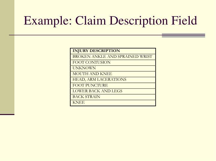 Example: Claim Description Field