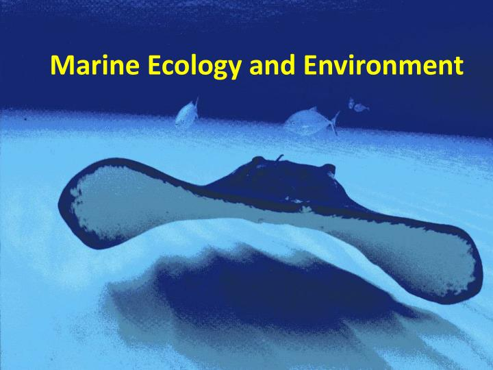 marine ecology and environment n.