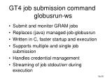 gt4 job submission command globusrun ws