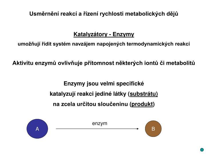 Usměrnění reakcí a řízení rychlosti metabolických dějů