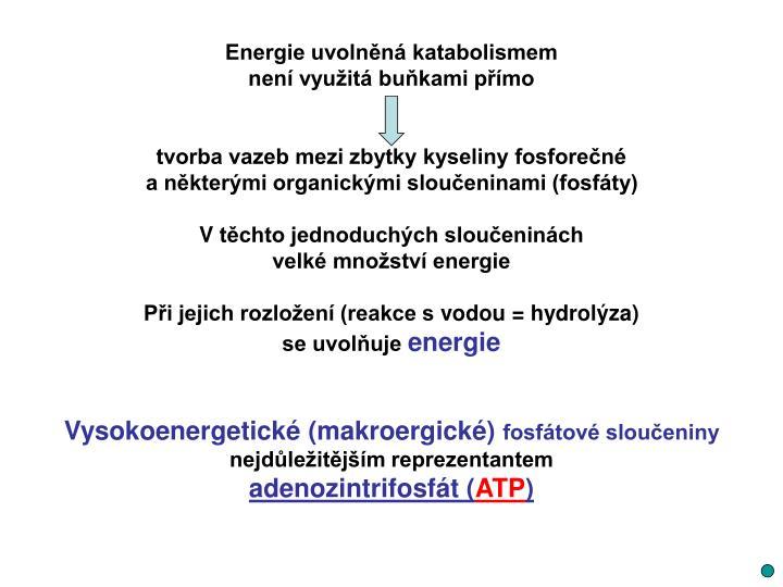 Energie uvolněná katabolismem