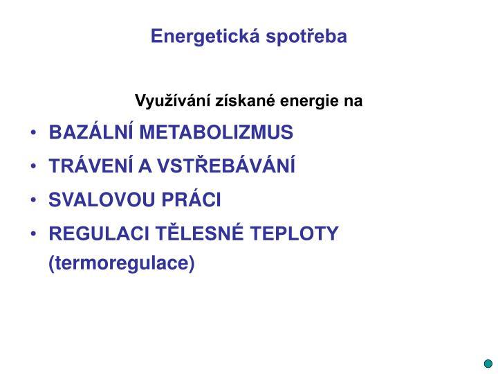 Energetická spotřeba