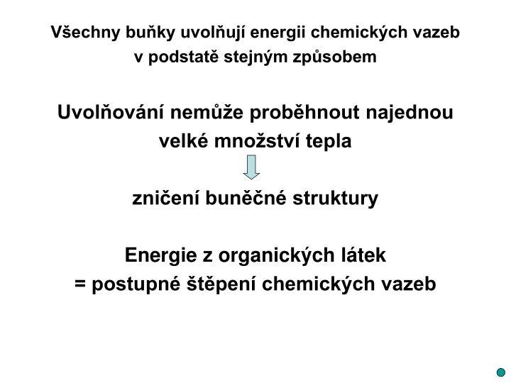 Všechny buňky uvolňují energii chemických vazeb