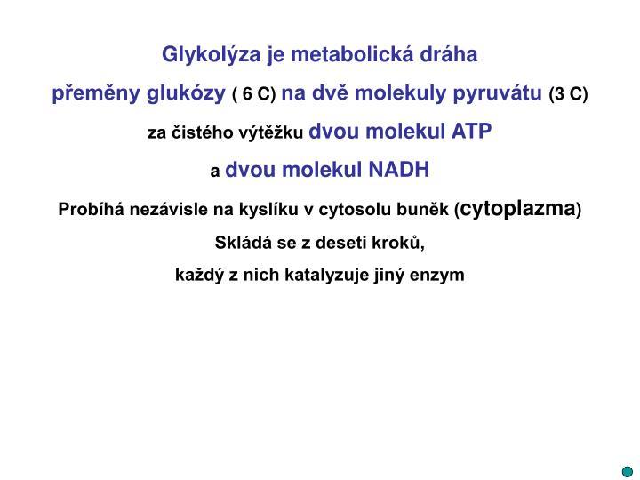 Glykolýza je metabolická dráha