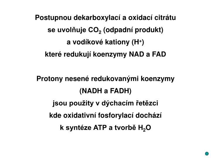 Postupnou dekarboxylací a oxidací citrátu