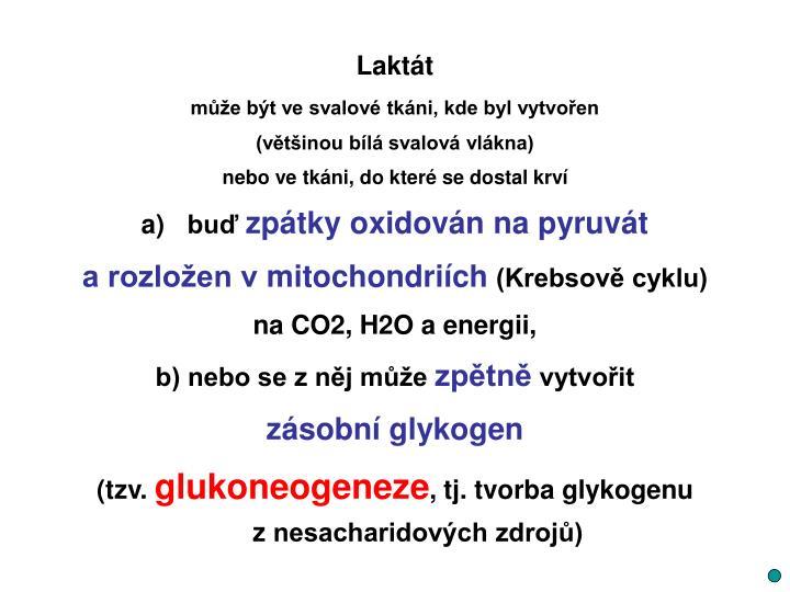 Laktát