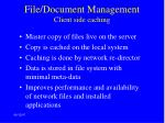file document management client side caching