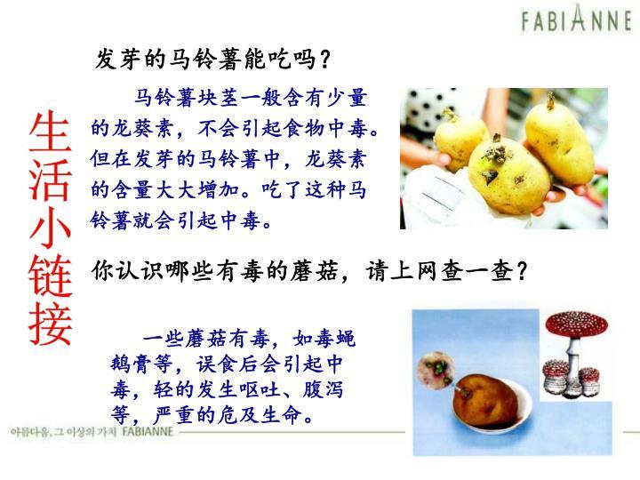 发芽的马铃薯能吃吗?