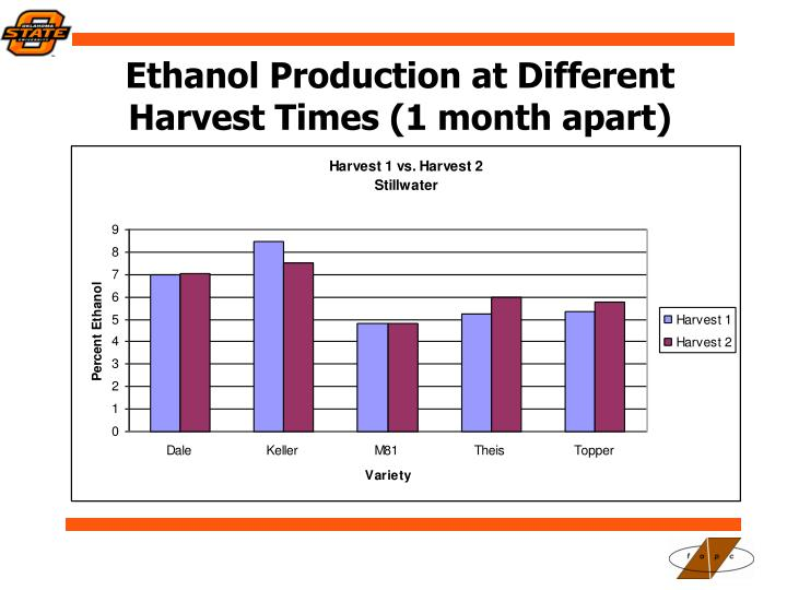 Ethanol Production at Different Harvest Times (1 month apart)