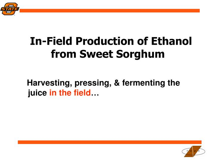 In-Field Production of Ethanol from Sweet Sorghum