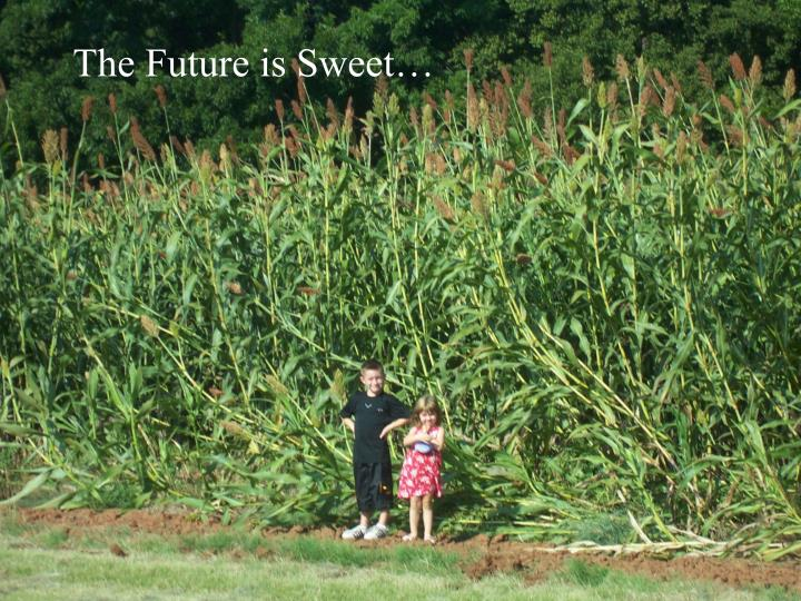 The Future is Sweet…