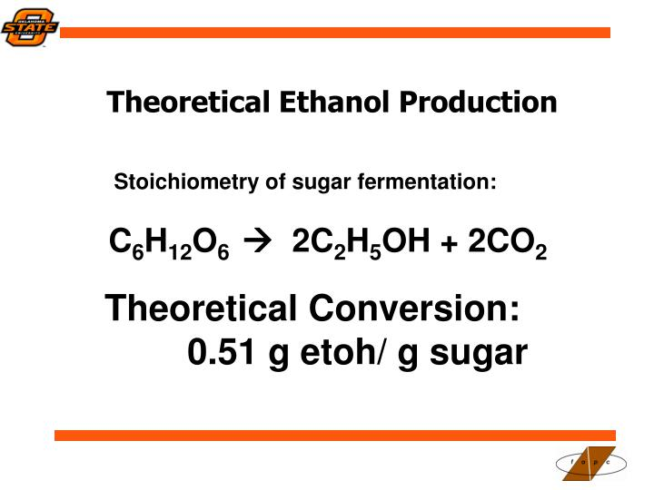 Theoretical Ethanol Production