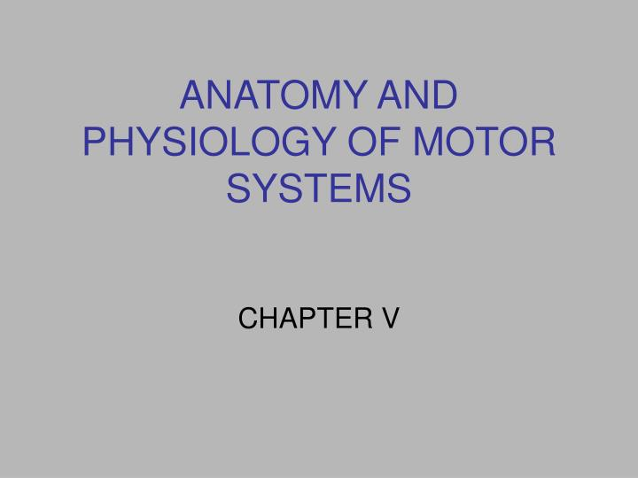 anatomy and physiology of motor systems n.
