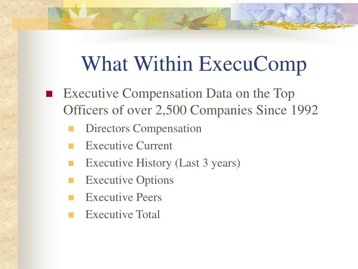 What Within ExecuComp