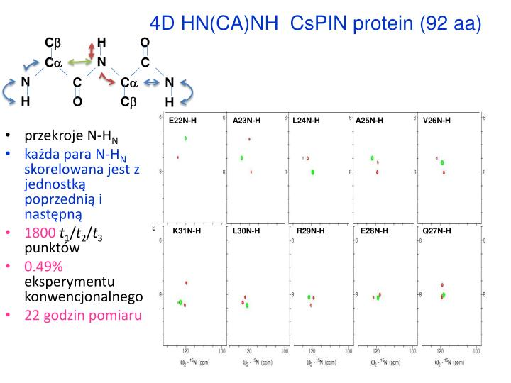 4D HN(CA)NH  CsPIN protein (92 aa)
