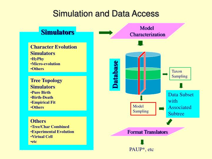 Simulation and Data Access