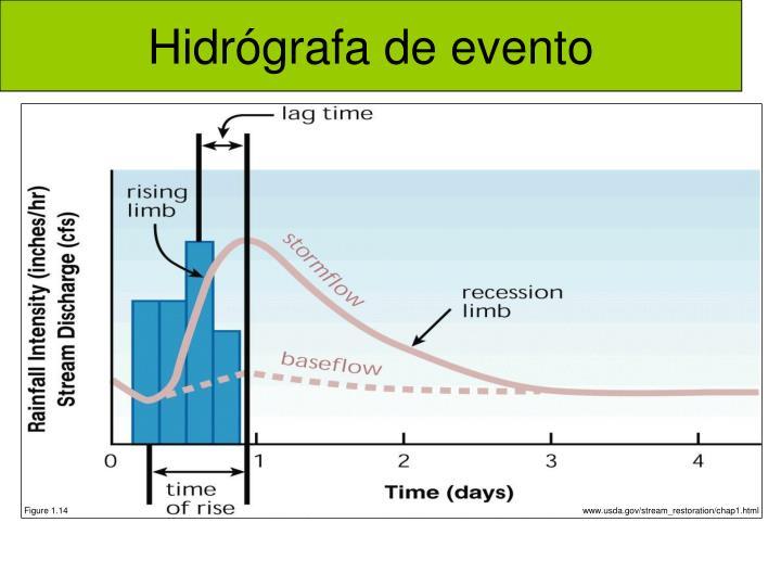 Hidrógrafa de evento