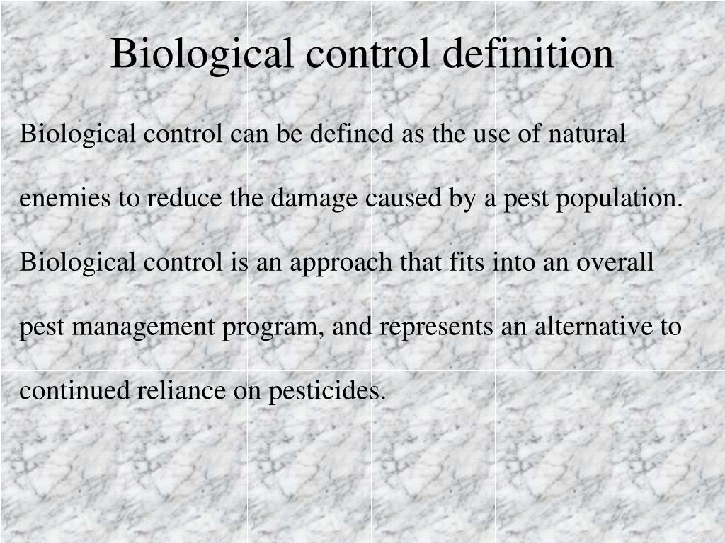 Ppt - Biological Control Of Insect Pests Prepared By Hamid El Bilali And Vito Simeone