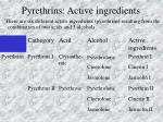 pyrethrins active ingredients