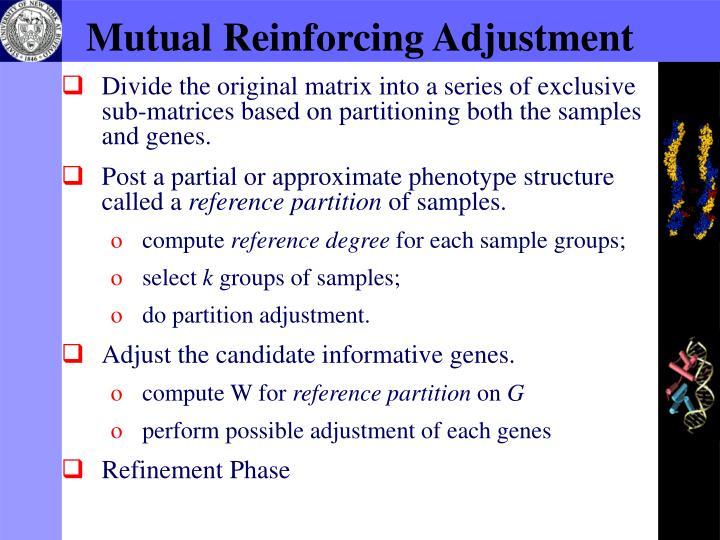 Mutual Reinforcing Adjustment
