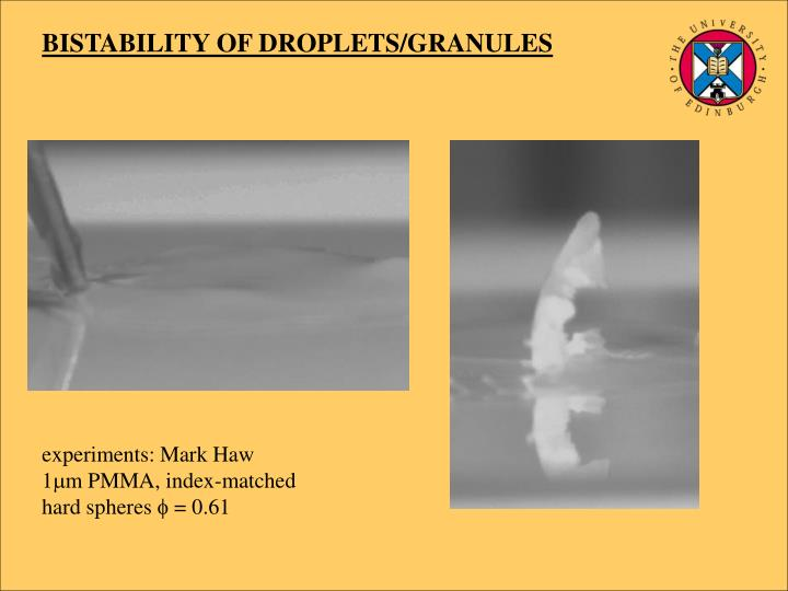 BISTABILITY OF DROPLETS/GRANULES