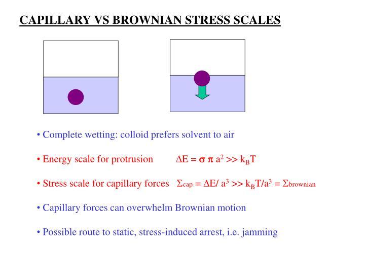 CAPILLARY VS BROWNIAN STRESS SCALES