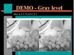 demo gray level1