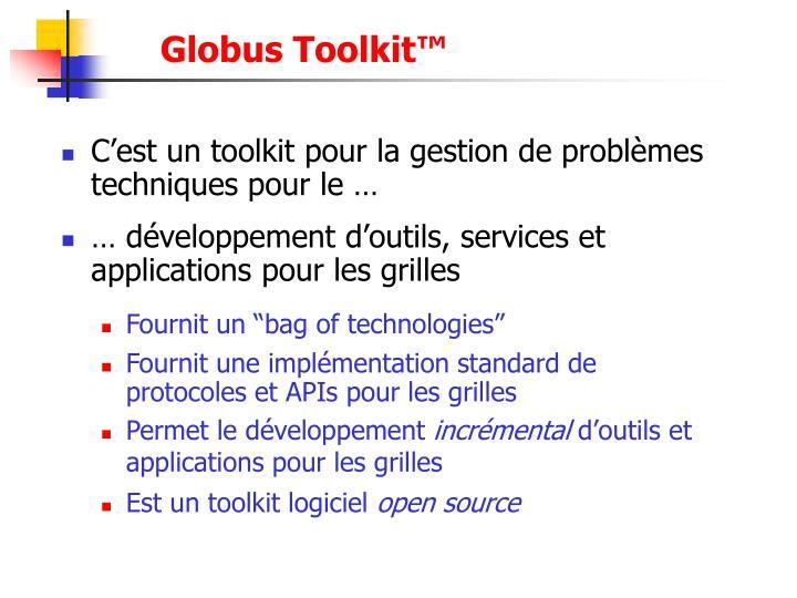 Globus Toolkit™