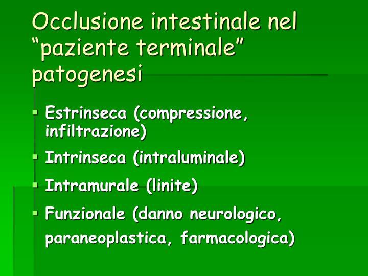 Occlusione intestinale nel paziente terminale patogenesi