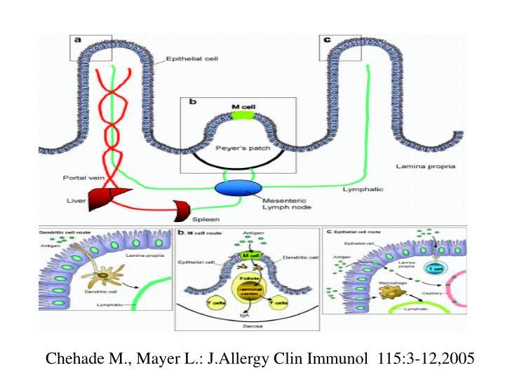 Chehade M., Mayer L.: J.Allergy Clin Immunol  115:3-12,2005