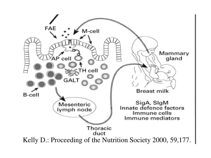 Kelly D.: Proceeding of the Nutrition Society 2000, 59,177.